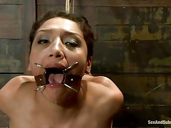 James knows how to put a doxy to respect, for example this one was a bad beauty and now this babe needs to be punished so after this chap tied her this chap removed the device that kept her mouth opened and inserted his schlong hard betwixt her pink juicy lips. That babe loves it so this chap puts some clothespins on her body so this babe can experience some pain too.