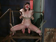 Here's pretty Sahara Rain, a cute wench with diminutive mambos and a very taut cunt. Sahara has been fastened by that wooden structure, ball gagged and her thighs fastened wide open. I begin rubbing her twat with a vibrator and that chick burst with pleasure like a fucking whore. Think I should now stuff her taut twat with something.