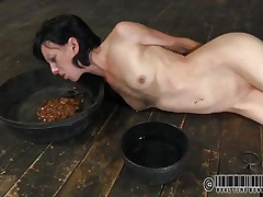 That babe has a bowl with water and one with food. Elise was a total floozy and now she's treated like one. Look at her how this babe struggles to eat and mostly of that food is on her face. What a obscene whore, this babe deserves greater quantity punishment for her manners. But first this babe needs some greater quantity humiliation, let's watch her play.