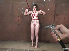 A beautiful white milf with red appealing lips is tied with a red rope and she groans and screams 'cuz her executor putted that rope between her cunt lips and at the end, a heavy bucket pulls the rope making it enter deeper in that shaved soaked cunt. She is tortured and wet, surely now she deserves a hard fuck, doesn't she?