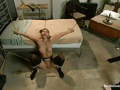 Rilyn Rae is a hot brown haired milf with worthwhile mangos and constricted pussy. The milf is tied on a daybed and has a gag in her mouth. She moans with pleasure While Danny strikes her big mangos with his leather whip. This guy receives on top of her, removing her gag, and copulates her face roughly making sure this sweetheart receives all the ramrod this sweetheart needs.