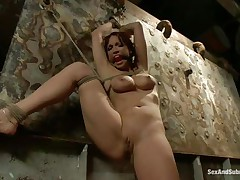Nicki Hunter is a red haired milf who enjoys having fellows around her while this babe is bound up with ropes. The hot honey likes having her mouth gagged, coz this babe knows this babe will screech if it wouldn't be for that cute ball gag. Dude comes and removes her ballgag, and starts to fuck her pussy, slamming her on the wall.