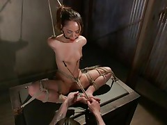 Kristina likes to sit comfortable and this babe was a fucking whore with no respect until this chap putted his paws on her. Now she's all bound up has clamps on her nipps that are pulling those small tits and a ball is used to gag her pretty mouth. Kristina sits there and gets whipped and punished, this babe deserves it.