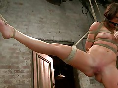 With weights added to her large nipples, sexually excited milf Mia Gold is fastened up and has one leg in the air for a better twat domination. Having her face hole gagged, this babe can only moan. Her femdom-goddess sticks a large marital-device in that wet twat of hers and a vibrator on her clit to drive her crazy. Will this babe cum soon?