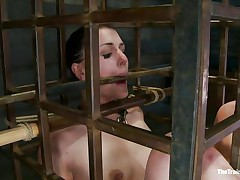 She was a bad girl and they had to put her in a cage and reeducate her. Now this babe is receiving what this babe deserves, a hard spank and some well deserved humiliation. Of course her shaved cum asking cunt is not to be neglected and the executor uses a fake penis to taunt her a bit. Wanna this babe the rest of it?