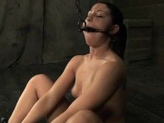 Beauty receives her neck restrained and knockers clamped
